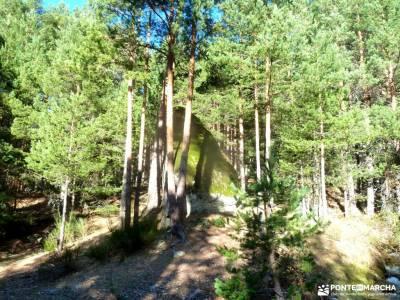 Loma del Noruego y Pinares de Valsaín;excursiones fin de año rutas senderismo navacerrada senderis